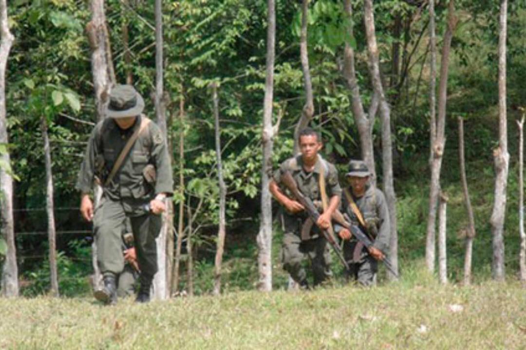 Batallón Ecologico masacre