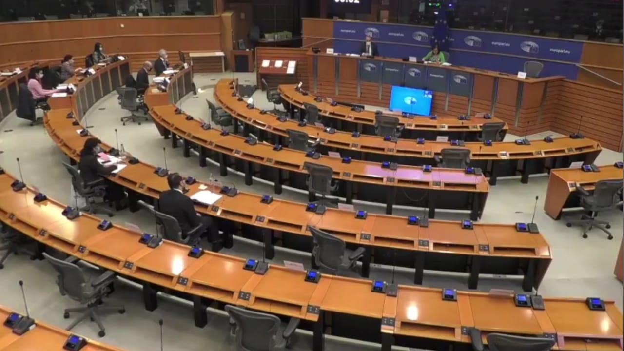 Parlamento Europeo 150321 (1)